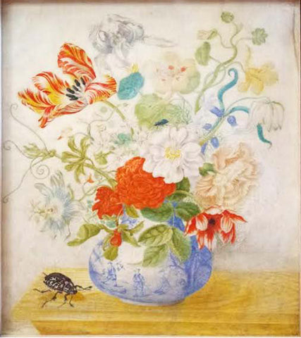 Maria Sibylla Merian (German, 1647-1717), Flowers in a Chinese vase