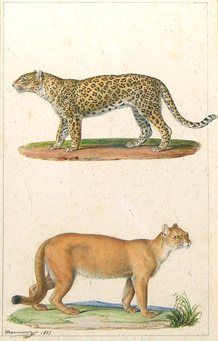 Jean - Baptiste Meunier (French, 1786-1858) Cheetah and Bobcat