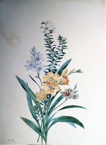 Adèle Riché (French, 1791-1887), Bouquet of Gladiolus
