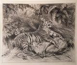 Alfred Thomas Elwes and John Jellicoe for GEORGE P. SANDERSON, Original Drawings for Thirteen Years Among the Wild Beasts of India