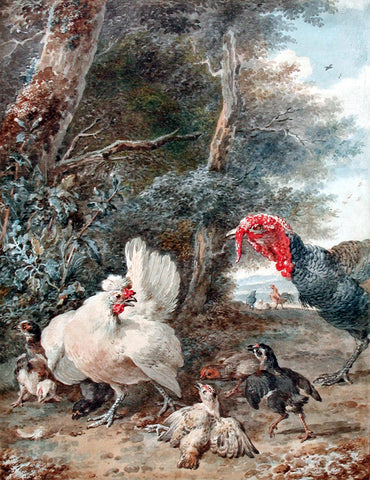 Aert Schouman (Dutch, 1710-1792), A Turkey Startling Chickens