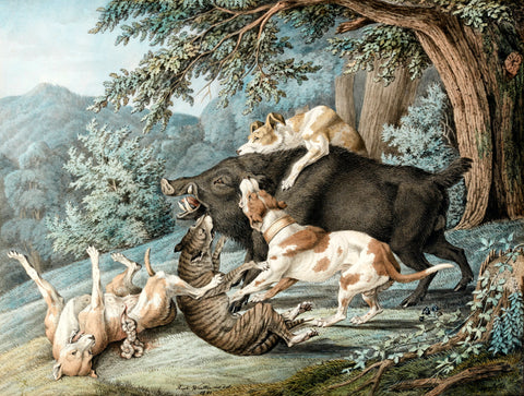RAPHAEL WINTTER (GERMAN, 1784-1852) Dogs Attacking a Boar