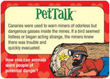PetTalk Conversation Card Game Pet Talk - EducationalLearningGames.com