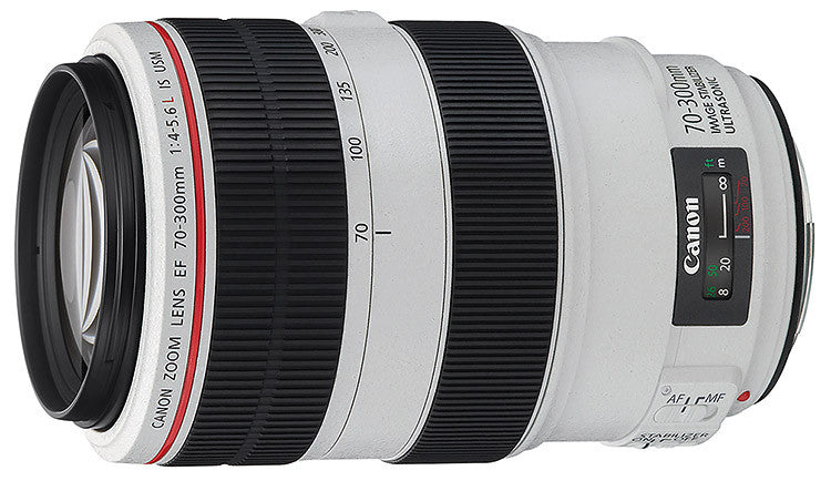 Canon EF 70-300mm f4-5.6L USM IS lens - Photocreative (905) 629-0100