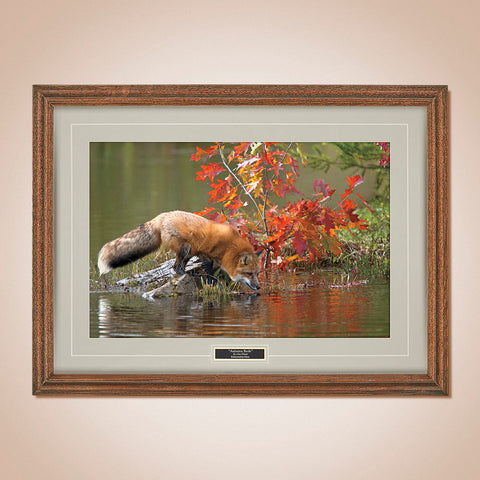 """Autumn Reds"" Scenic Print by Lisa Husar"