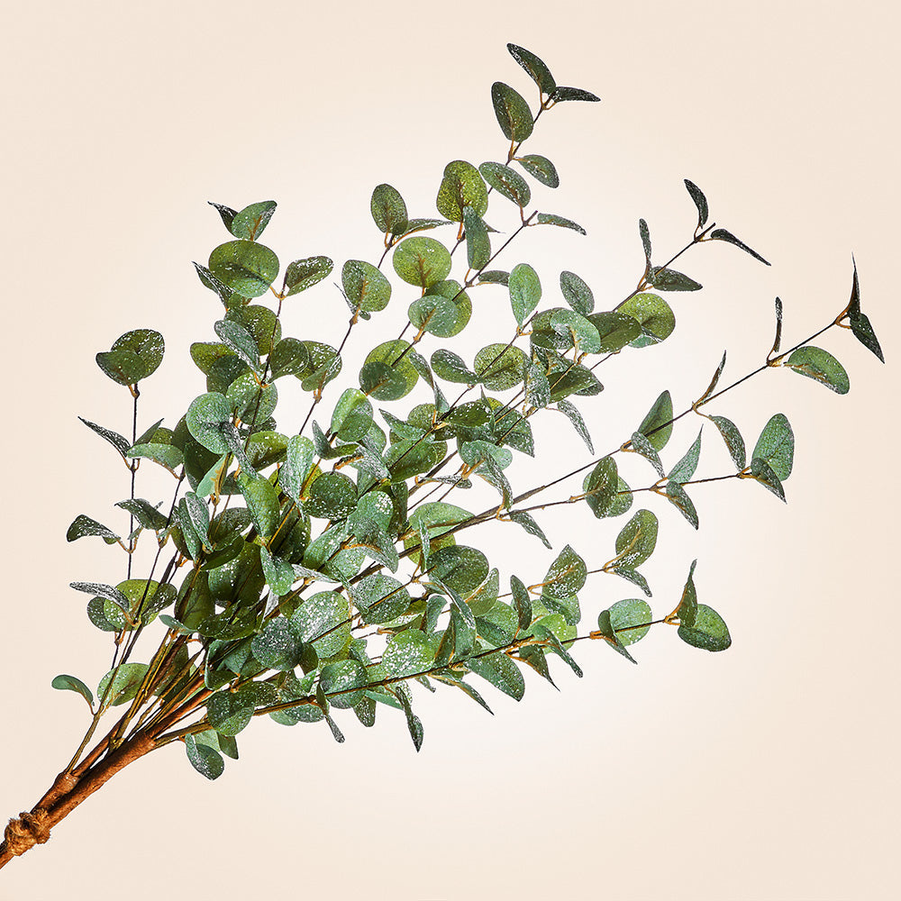 Holiday Eucalyptus Spray Stem, 36""