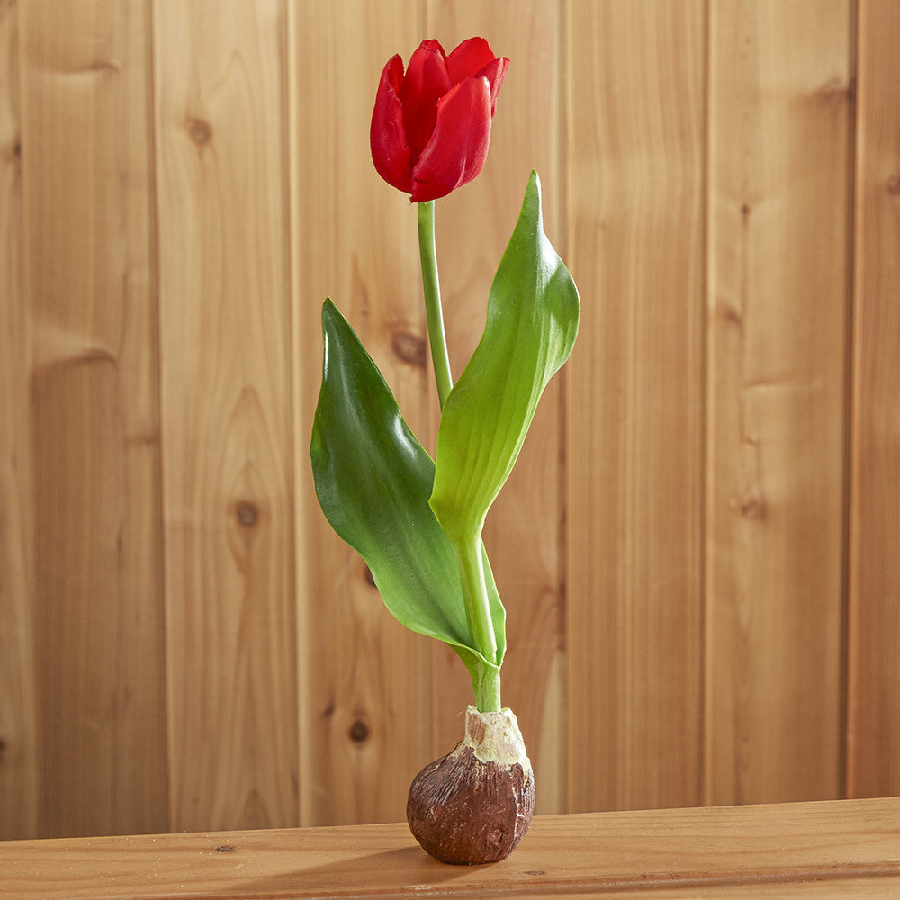 Tulip Bulb Drop-In, Red