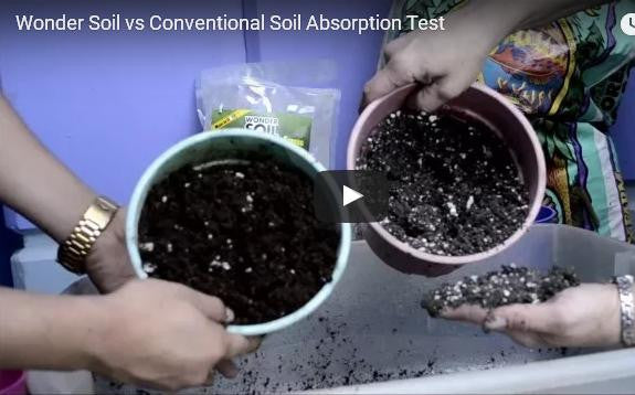 Wonder Soil vs Conventional Soil Absorption Test