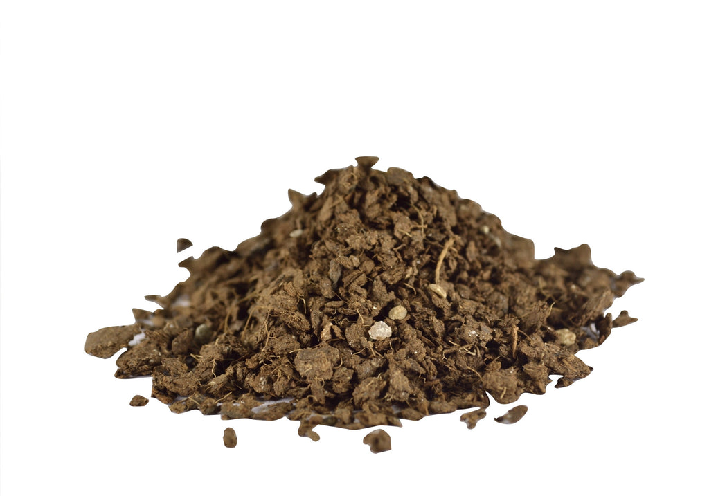 Wonder Soil Coir the Foundation of a Healthy and Productive Lawn and Garden