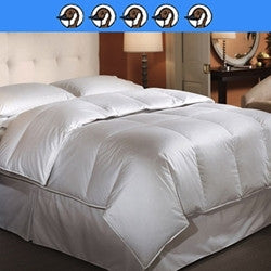 Bavaria: 800 Fill Power Hungarian White Goose Down 350 Thread Count Long-Staple Egyptian Cotton Batiste Woven in Germany Baffle Box