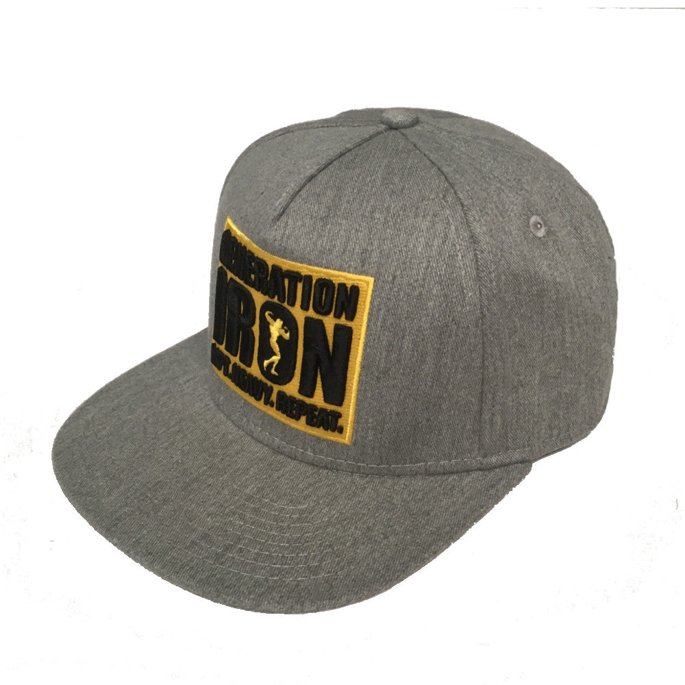 Generation Iron LIFT, HEAVY, REPEAT Snapback Hat (Grey)