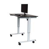 48″ Electric Standing Desk