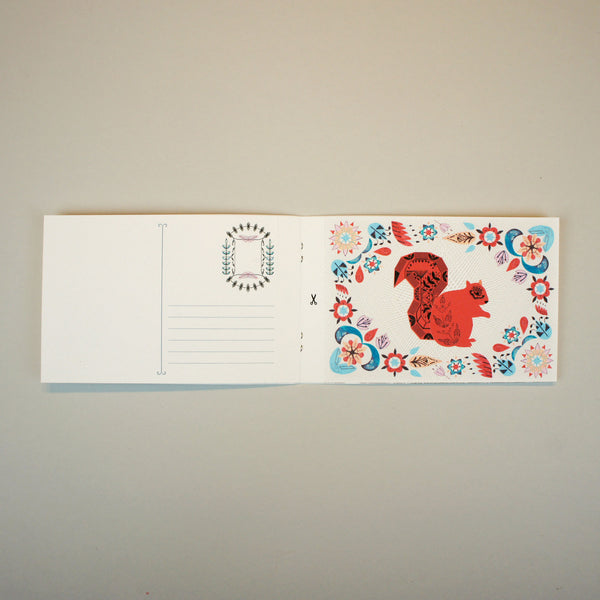 Squirrels Postcard Book