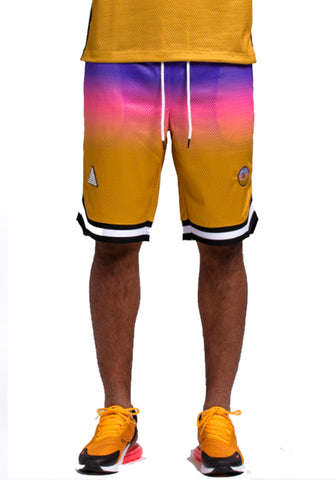 Black Pyramid Ombre Shorts