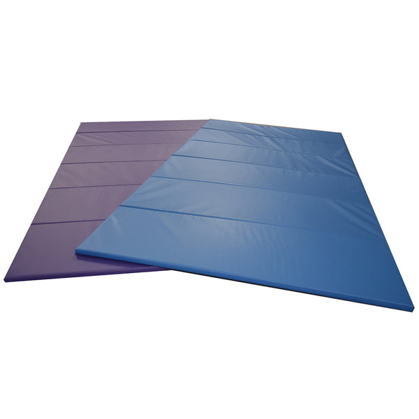 Carolina Gym Supply Panel Mats Purple and Blue