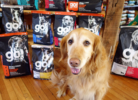 Free Go Dog Food