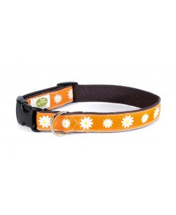 Earth Dog Astrid Collar