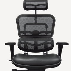 Ergohuman High Back Mesh/Leather Executive office chair model LEM4ERG Review