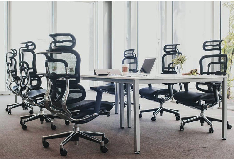 Ergohuman High Back Mesh Office Chairs