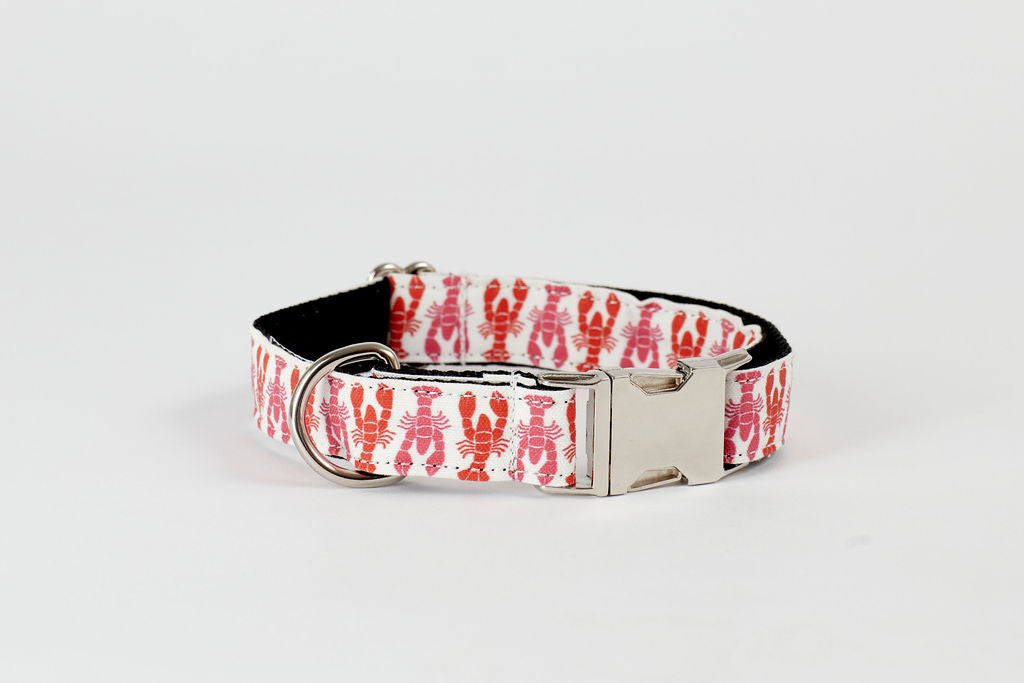 Dog Collar - Pink/Orange Lobsters