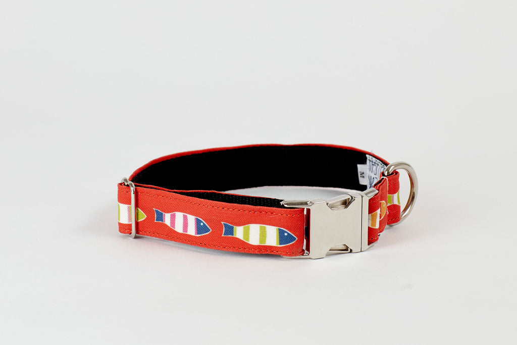 Dog Collar - Orange Picket Fish