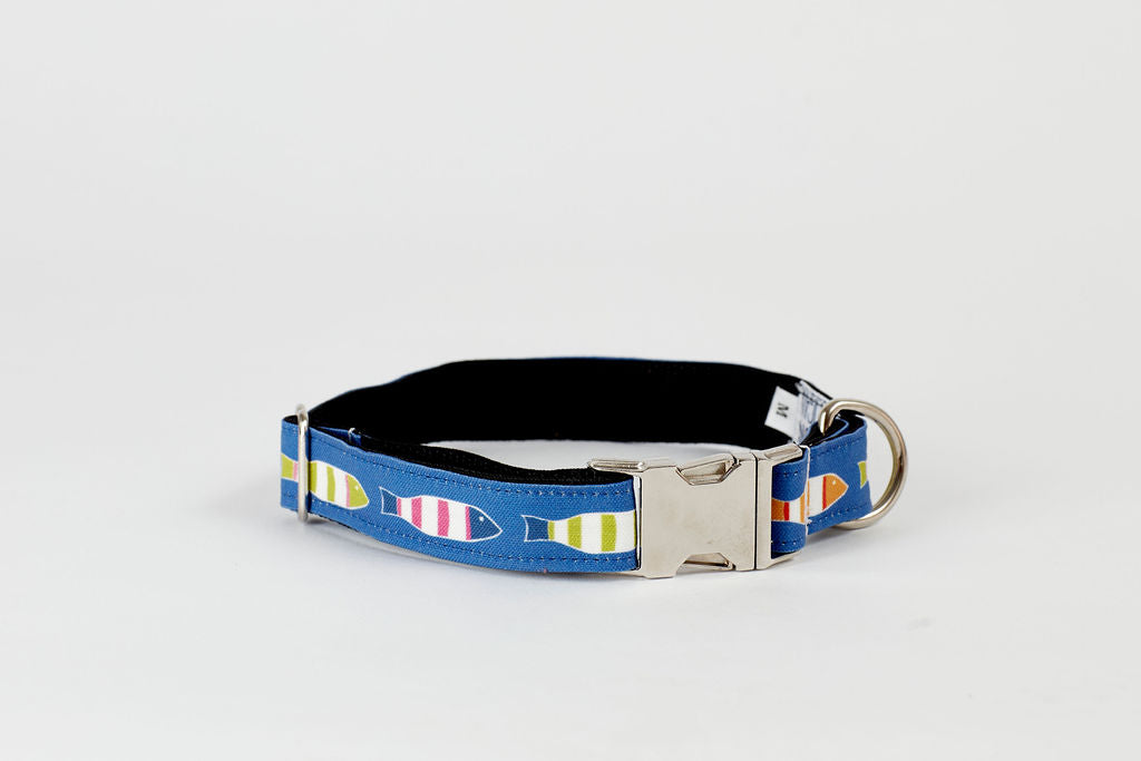Dog Collar - Blue Picket Fish