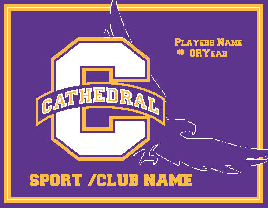 NEW Any Sport/Club Cathedral Eagle 60 x 50