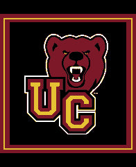 Ursinus Bear Pillow 20 x 20