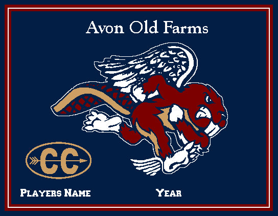 Custom Avon Old Farms CROSS COUNTRY Name & Number OR Year  60 x 50