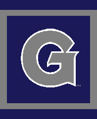 Georgetown G Pillow 20 x 20