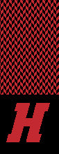 Haverford H Chevron Scarf