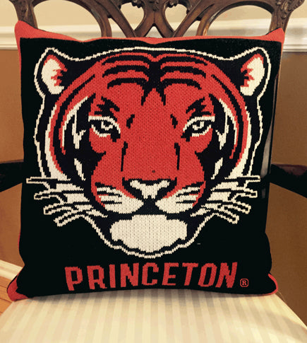 Princeton Tiger Pillow 20 x 20