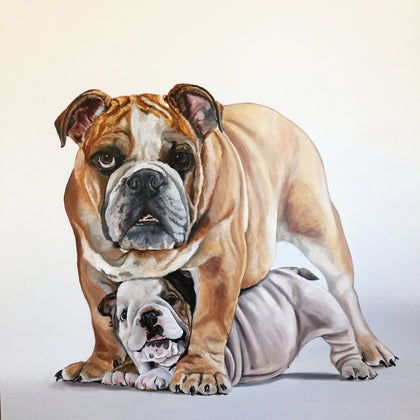 Pet Portraits by Gail Chandler