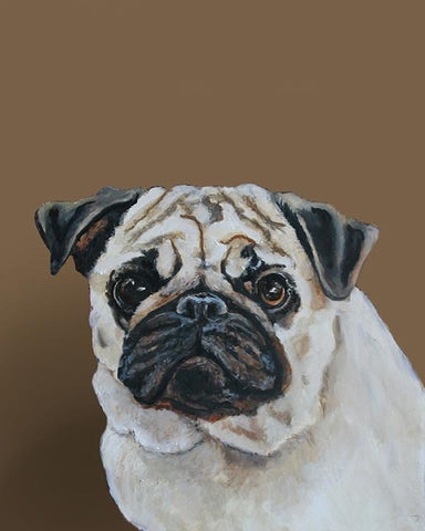 Pug 1 by contemporary realism artist Gail Chandler