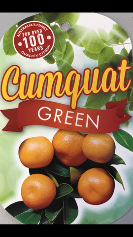 Cumquat Green 200mm