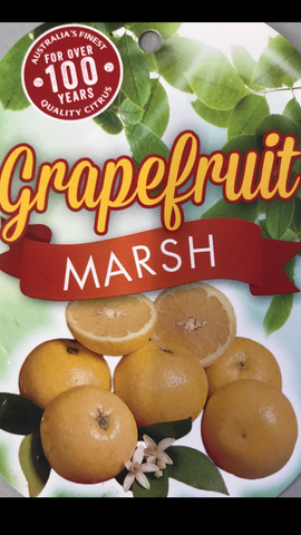 Grapefruit Marsh 200mm