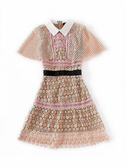 Fashion Pink Contrast Collar Mesh Cape Sheer Trim Lace Mini Dress