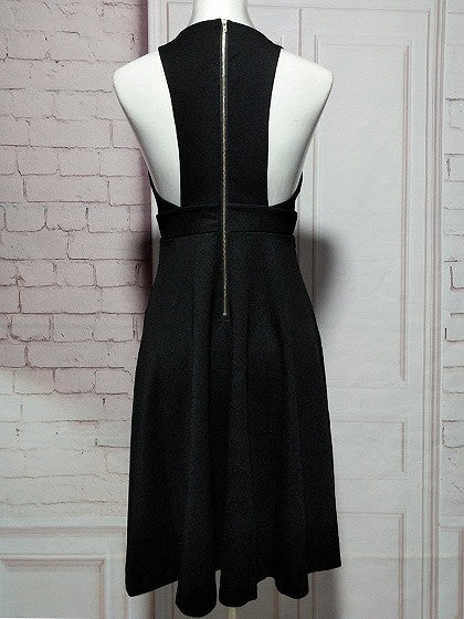 Black Deep Plunge Sleeveless Cut Away Skater Dress