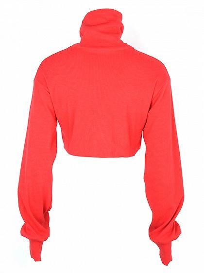 Red High Neck Long Sleeve Crop Top