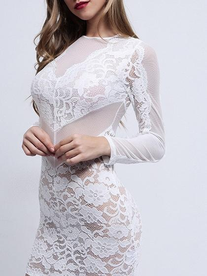 White Sheer Mesh Panel Open Back Long Sleeve Lace Bodycon Mini Dress