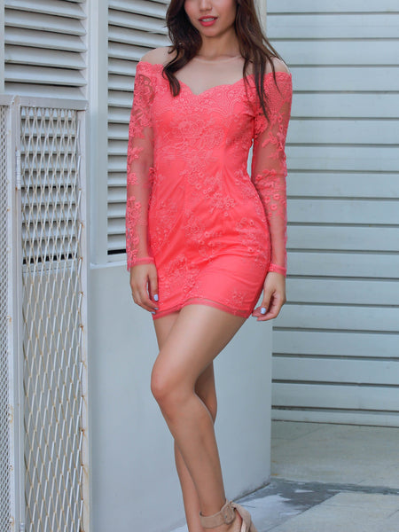 Pink Embroidery Sheer Panel Long Sleeve Bodycon Mini Dress