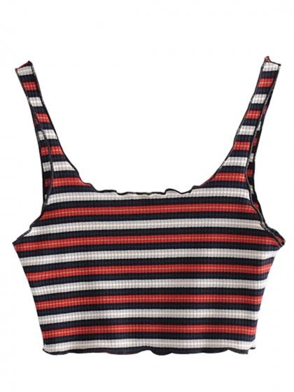 Polychrome Stripe Ribbed Crop Tank Top