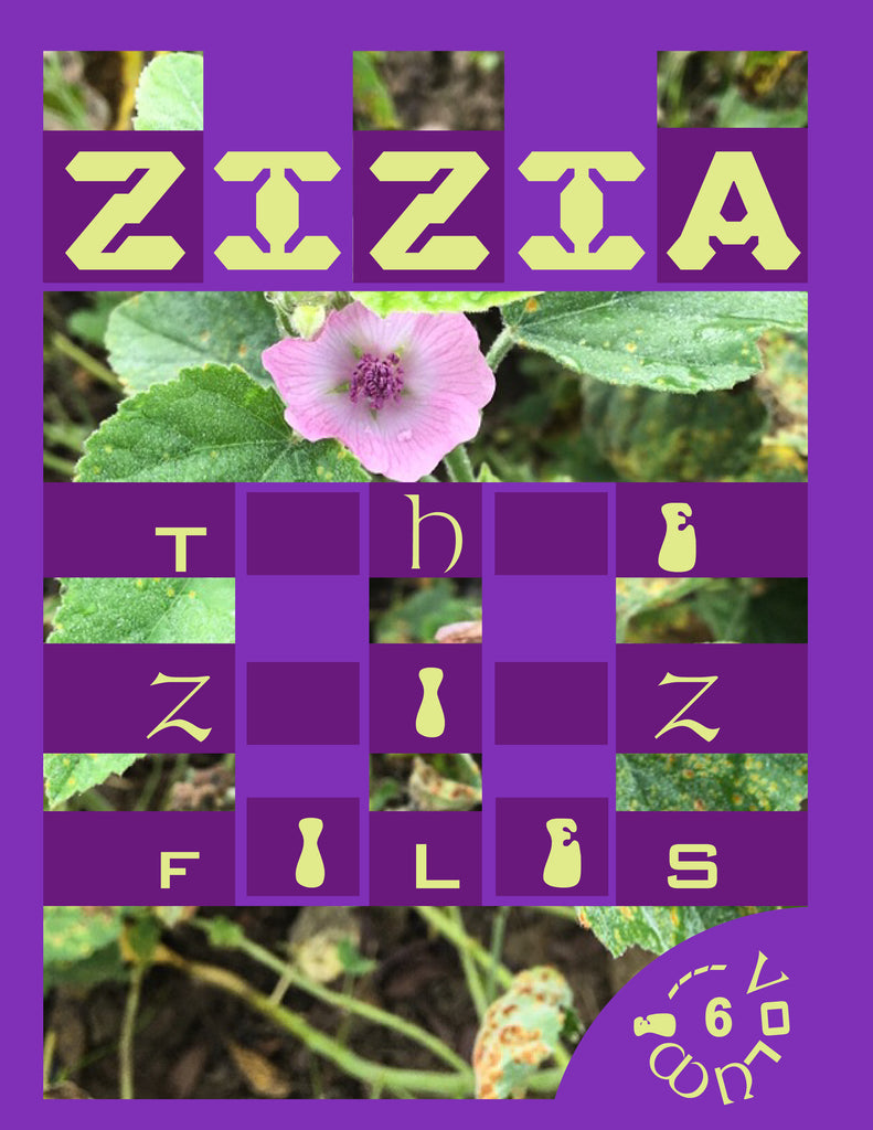 The Ziz Files Vol. 6