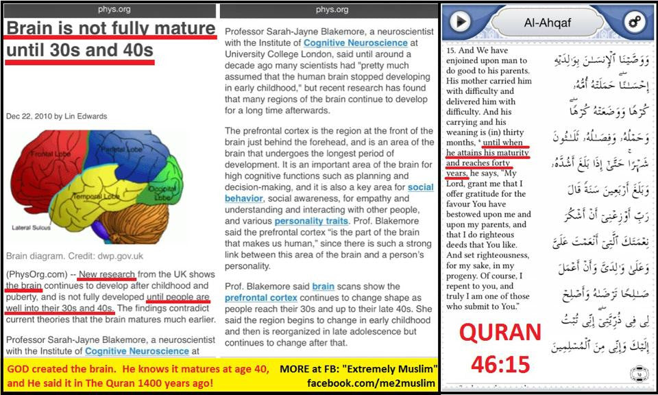 Quran knows Brain Matures in the 40s