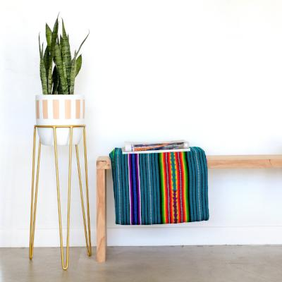 Loro Serape Blanket {Local & Lejos}