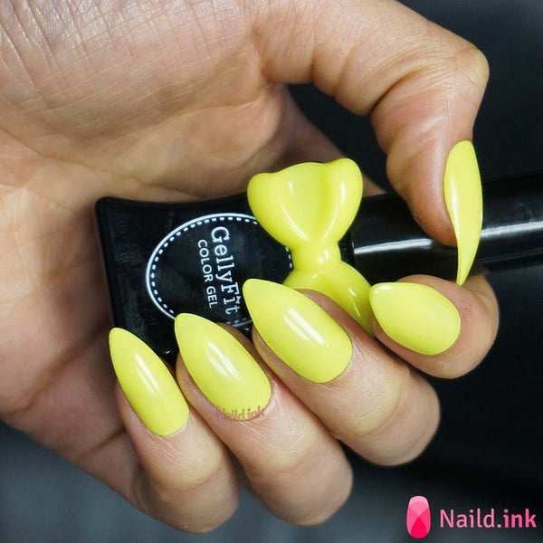 GellyFit - 2016 Vivid Neon Collection Set