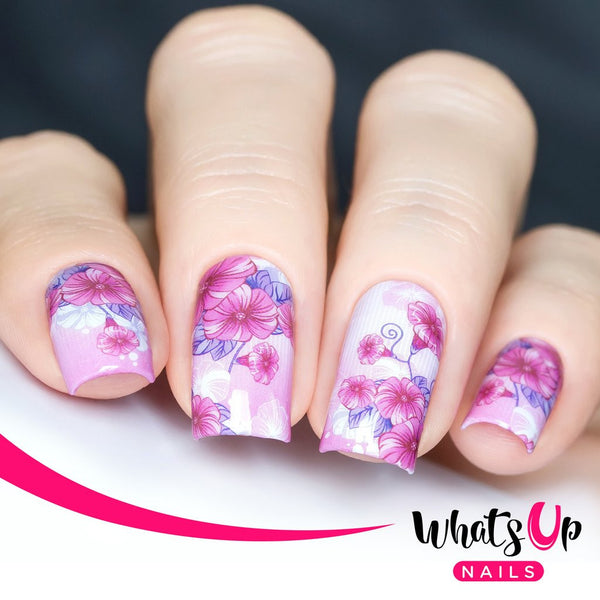 Whats Up Nails - P079 Girly Petals Water Decals