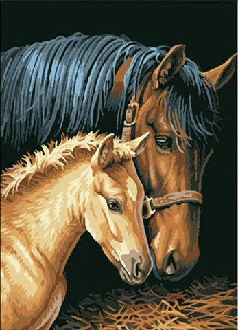 Painting By Numbers - Horse Couple
