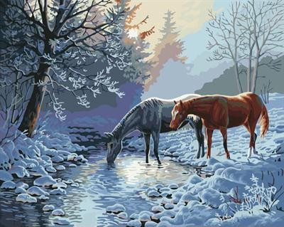 Painting By Numbers - Horse Landscape