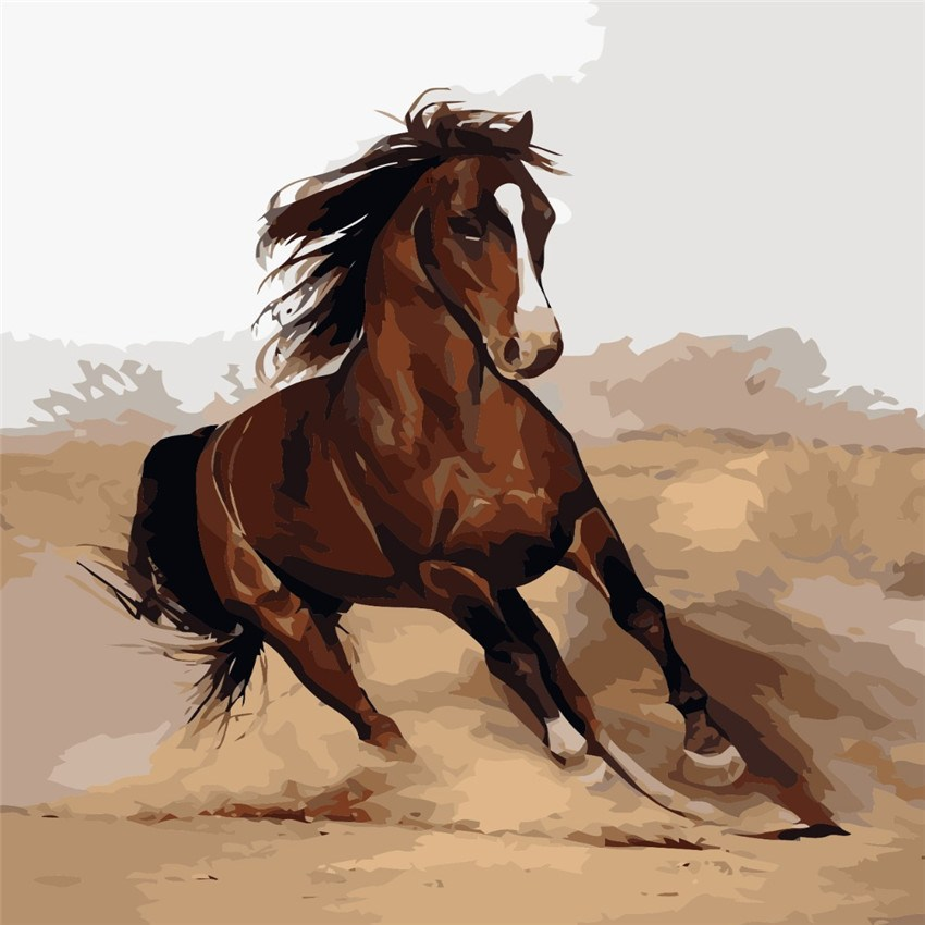 Painting By Numbers - Running Horse - Zana Horse - 1